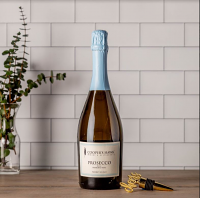 Prosecco and Cheers Stopper Gift Set
